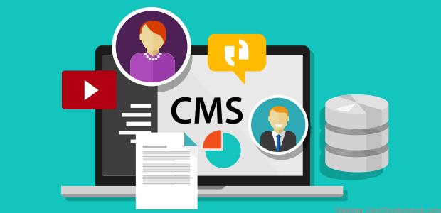 best content management systems 2021